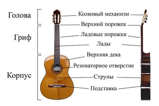 Устройство гитары не